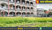 केंद्र सरकार ने जारी किया निर्देश, अब स्कूलों में उगानी पड़ेंगी सब्जियां