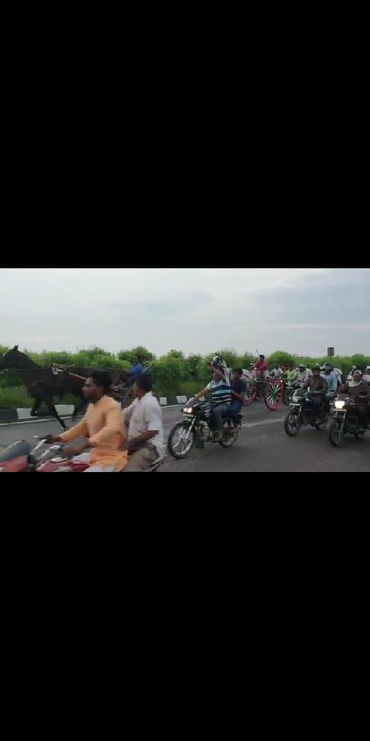 हाइवे पर घोड़े और बाइकर्स की रेस