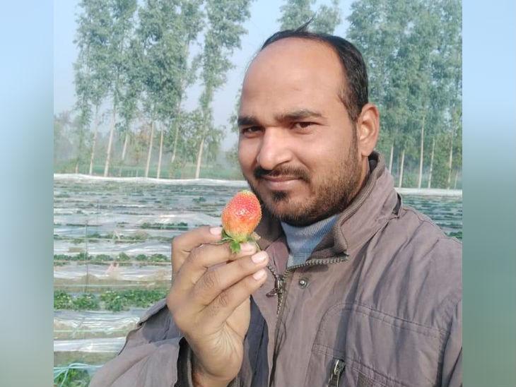 बाराबंकी के सरकारी टीचर ने छुट्टी लेकर, फल-सब्जियों की खेती शुरू की, सालाना एक करोड़ हो रही है कमाई