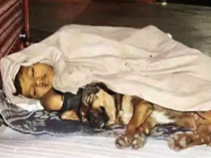 फुटपाथ पर बचपन:पिता जेल में, मां साथ छोड़ गई; दिन में गुब्बारे बेचकर या चाय दुकान पर काम कर गुजारा करता है 10 साल का अंकित, कुत्ता बना 'साथी'