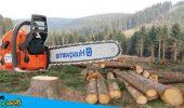 पर्यावरण सुरक्षा की दिशा में जौनपुर डीएफओ जीसी त्रिपाठी की सराहनीय पहल, ऑनलाइन लेनी होगी पेड़ काटने की अनुमति