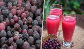 Health Benefits Of Falsa Fruit: कोलेस्ट्रॉल से लेकर पेट दर्द में निजात दिलाने में अचूक औषधि है फालसा