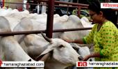 आज की पॉजिटिव खबर:जयपुर की जागृति पिता के साथ मिलकर बना रहीं गाय के गोबर से हैंडमेड डायरी और कैलेंडर, सालाना 1 करोड़ टर्नओवर, विदेशों में भी मार्केटिंग