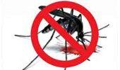 16 हजार से अधिक घरों में सर्वे, 205 में मिला डेंगू मच्छर का लार्वा