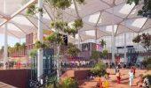 Noida news: नोएडा एयरपोर्ट के लिए कटेंगे 11460 पेड़, यमुना अथॉरिटी ने लगाए दस गुना पौधे