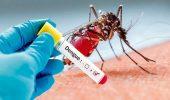 दिल्ली में डेंगू का प्रकोप, नोएडा और गाजियाबाद में भी टूटा 5 साल का रिकॉर्ड
